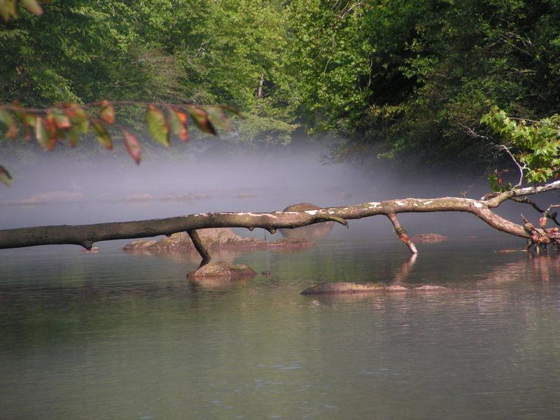 midday fog